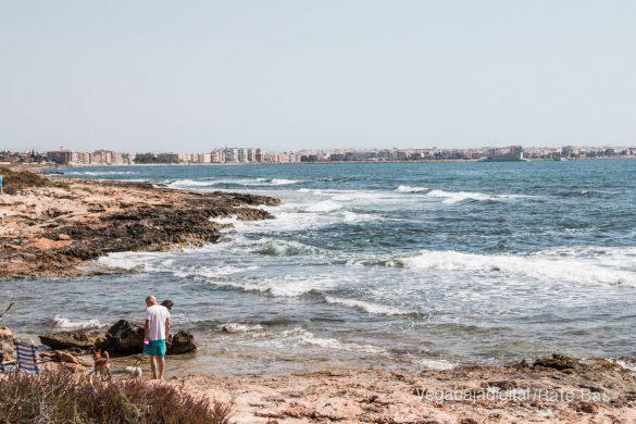 Así es la nueva playa canina de Torrevieja 10