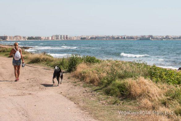 Así es la nueva playa canina de Torrevieja 11