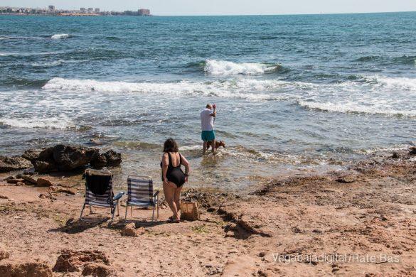 Así es la nueva playa canina de Torrevieja 13