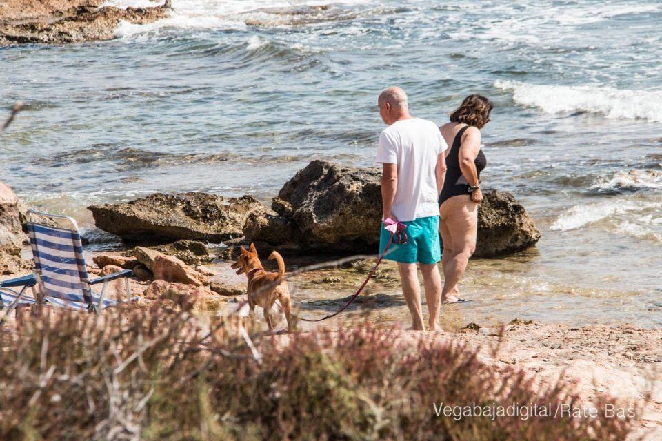 Así es la nueva playa canina de Torrevieja 6