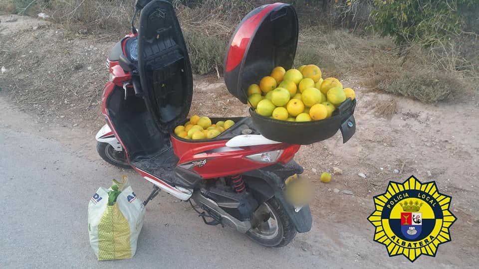 La Policía Local de Albatera pilla a un individuo que venía de robar naranjas en el campo 6