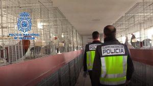 Desarticulado en Almoradí un laboratorio clandestino con capacidad para producir 600 kg de cocaína al mes 8