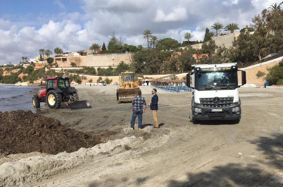 Limpieza Viaria cuenta con un nuevo servicio de recogida de restos de posidonia de las playas 6