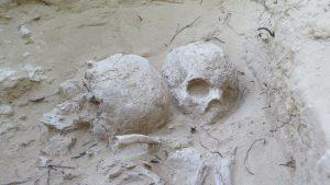 Hallan en el de Cabezo del Molino de Rojales un 'complejo industrial' del periodo Ibérico 7