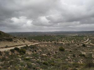 Cambiemos se une a las alegaciones de los grupos ecologistas para paralizar las macroplantas solares cerca de Sierra Escalona 7