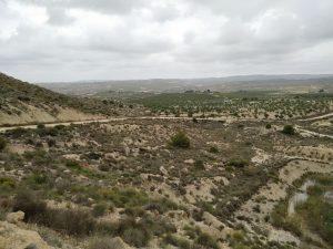 Cambiemos se une a las alegaciones de los grupos ecologistas para paralizar las macroplantas solares cerca de Sierra Escalona 8