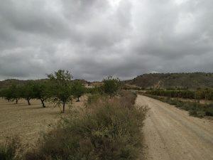 Cambiemos se une a las alegaciones de los grupos ecologistas para paralizar las macroplantas solares cerca de Sierra Escalona 10