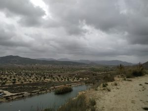 Cambiemos se une a las alegaciones de los grupos ecologistas para paralizar las macroplantas solares cerca de Sierra Escalona 9