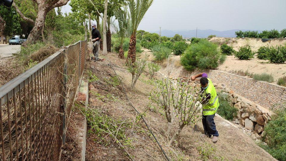 El Ayuntamiento de Benejúzar contrata a diez personas gracias a dos programas de empleo 6